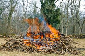 Risbränning 3
