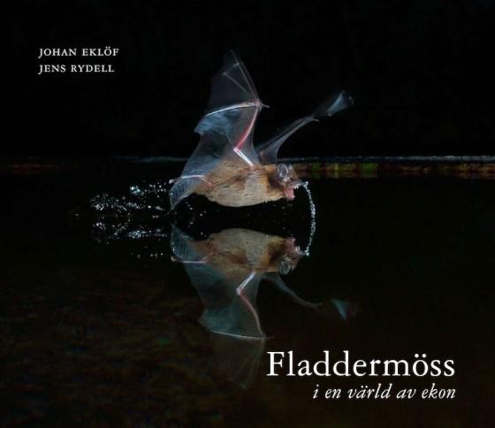 fladermoss-Framsida
